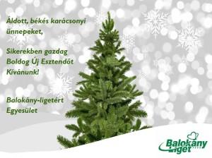 Karácsonyi1